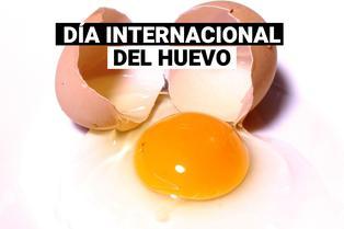 Día mundial del huevo: ¿Por qué se celebra?