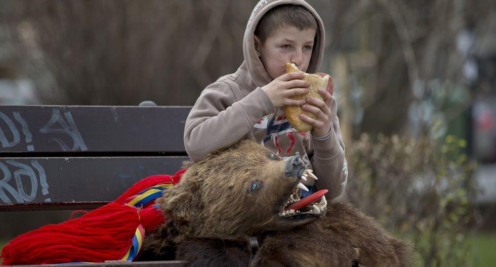 Rumania y su tradicional paseo de osos por Navidad - 8