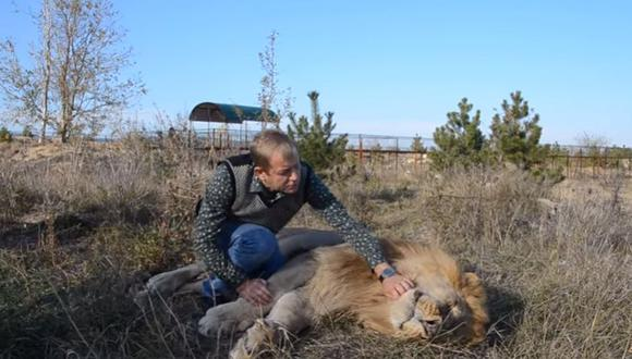 El león permanece inmóvil mientras su dueño se acerca a él.(Foto: Captura de Youtube)