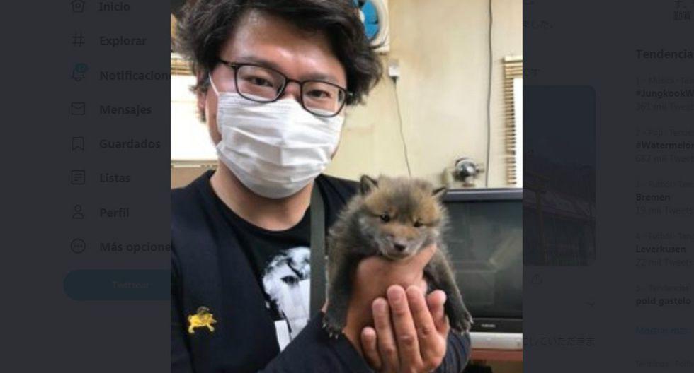 """Sin embargo, todo cambió cuando el chico adjuntó un video. Algunos usuarios le advirtieron que el animal """"ladraba raro"""" y que había la posibilidad de que se tratara de un mapache y no de un perro. (Foto: Twitter/@marcy_com)"""