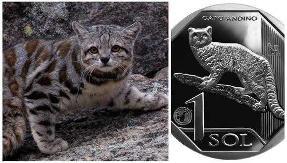 """Esta es la novena moneda de la colección """"Fauna Silvestre Amenazada del Perú""""."""