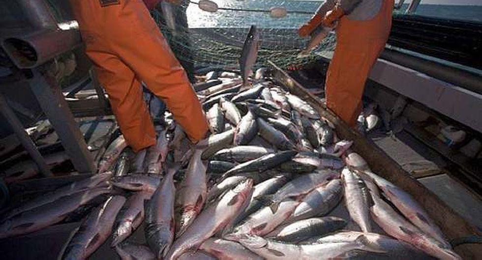 Pesca de consumo humano directo tuvo importante crecimiento. (Foto: El Comercio)