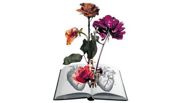San Valentín: libros de amor y otros demonios