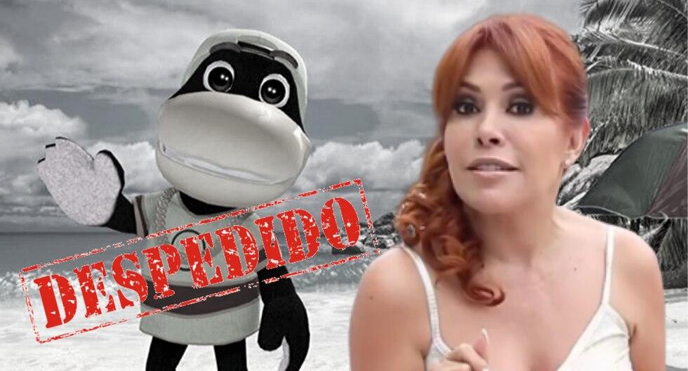 """La conductora de televisión indicó que no soportará con actos de corrupción dentro de """"Magaly TV, la firme"""".   (Foto: Instagram/Facebook/Composición)"""