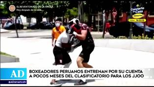 Boxeadores peruanos entrenan por su cuenta a pocos meses del clasificatorio para los JJOO