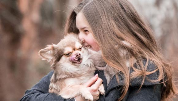 Algunos perros les gusta los abrazos, pero otro se sienten incómodos y hasta estresados (Foto: Pixabay)