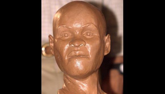Bomberos habrían recuperado el cráneo de Luzia entre restos del Museo Nacional de Brasil. (AFP).