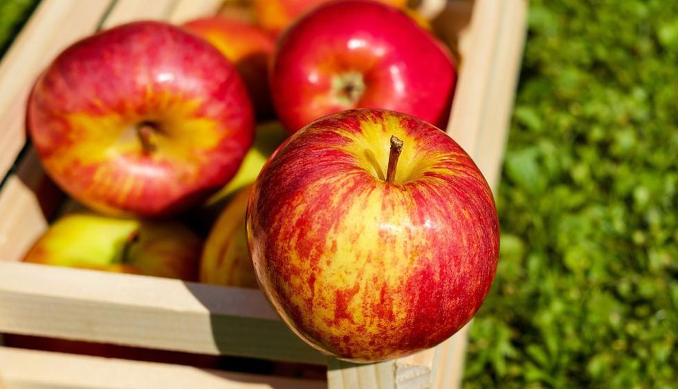 El pelar gran cantidad de manzanas puede convertirse en una experiencia agotadora, pero este hombre encontró la solución. (Foto: Pixabay)