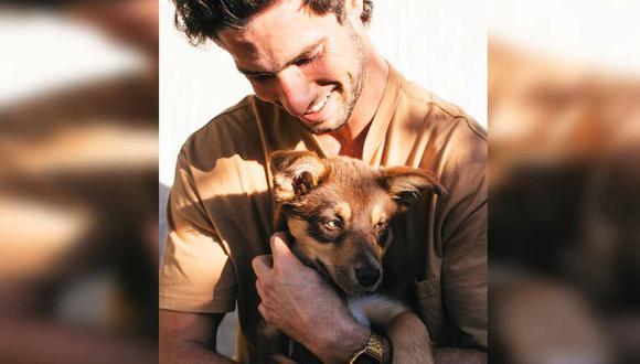 La perrita se perdió en junio de 2016 y tras casi 5 años logró reencontrarse con su dueño. | Foto: Pexels