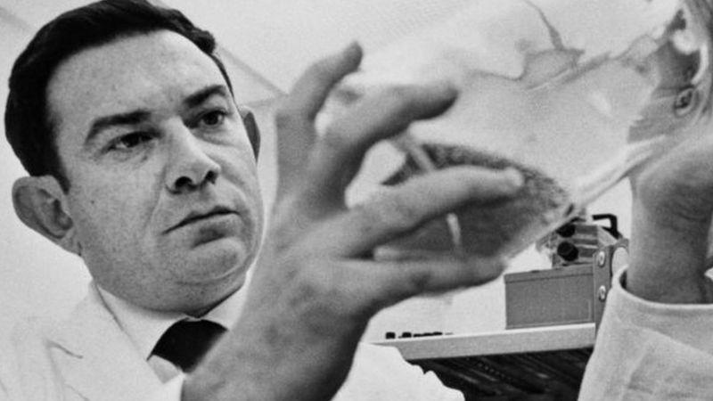 El hallazgo de Leonard Hayflick dejó consencuencias para el campo del cultivo celular y la producción de vacunas. (GETTY IMAGES)
