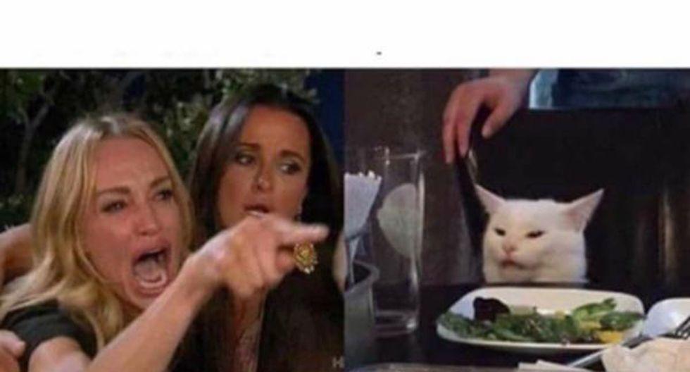 Los memes del gato y la mujer que le grita causan sensación en las redes sociales | Foto: @McMelo2.0R