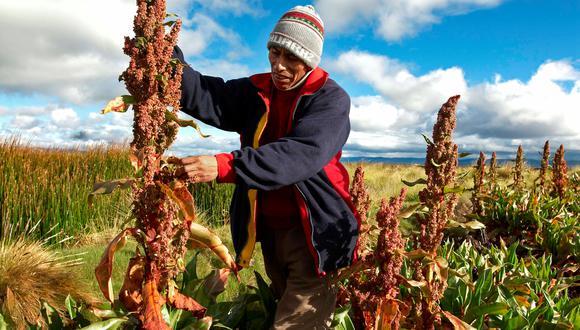 El 97% de las unidades agropecuarias son familiares. (Foto: GEC)