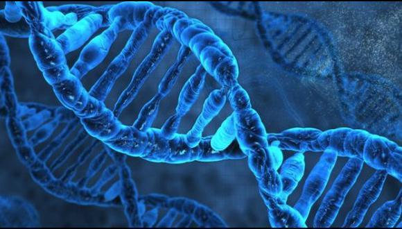 Secuencian el genoma de un hombre africano de hace 4.500 años