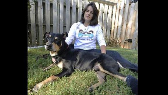 Perro sobrevive a eutanasia en Estados Unidos