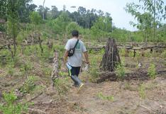 Perú: dos nuevos asesinatos de indígenas cacataibo en zona tomada por el narcotráfico