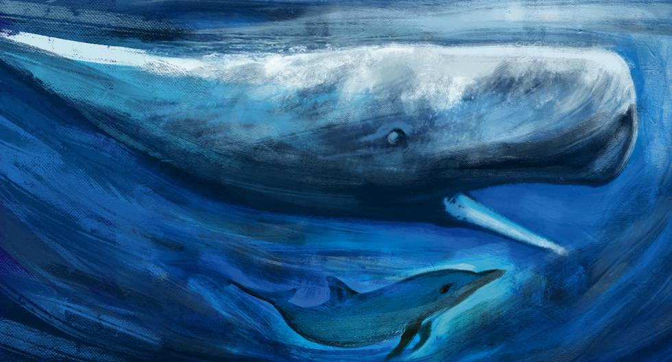 Los cetáceos y el hipopótamo tienen un antecesor común que vivió durante el Paleoceno y el Eoceno. La rama de la que desciende el hipopótamo conservó sus dedos pares; en las ballenas estos se convirtieron en aletas. (Ilustración: Víctor Aguilar)