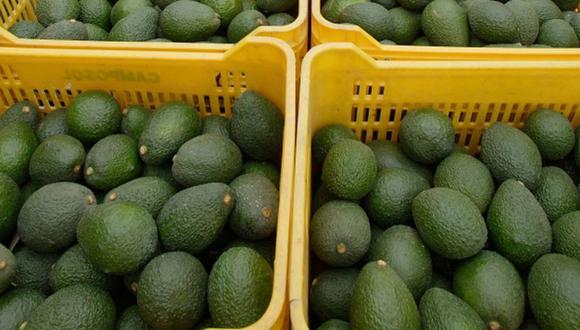 Los aguacates son uno de los alimentos que han experimentado un sorprendente aumento de precios en las últimas semanas. (Foto: Difusión)