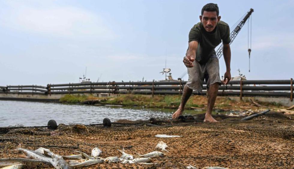 El desafío de algunos para comer: aprender a pescar y cazar. (Foto: AFP)