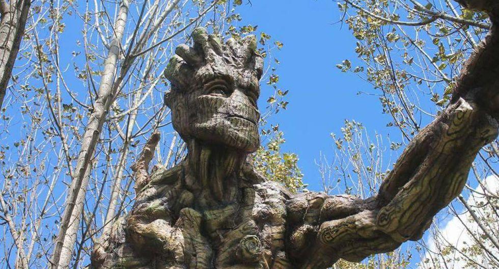 Humedal de Huasao. Sus principales atractivos son las figuras de 'Groot' y 'Ents', réplicas de películas del cine; a las que se ha denominado como guardianes del bosque.(Foto: Difusión)