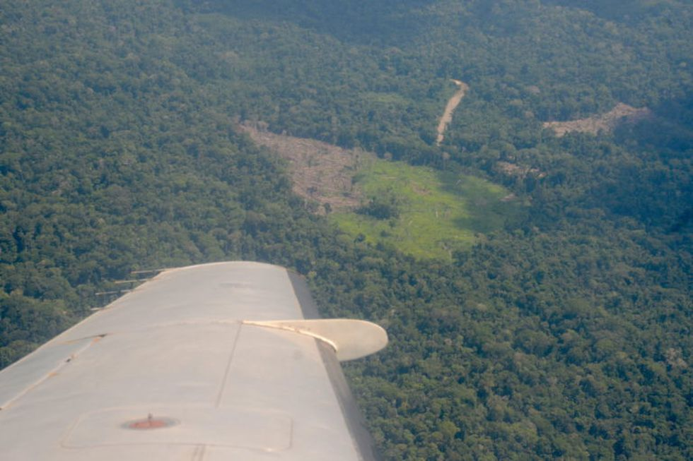 Desde el aire se observa la pérdida de bosques. Foto: Yvette Sierra Praeli.