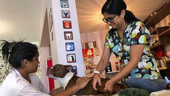 Nayeli Correa lleva a Kira a terapia al menos dos veces por semana.