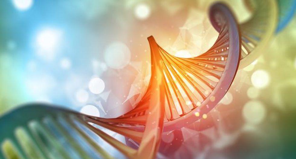 El gen BRCA2 se encarga reparar el ADN. (Foto: Getty Images)