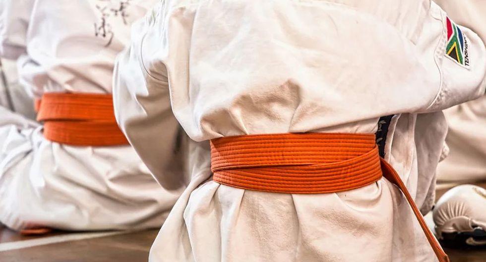 Un instructor de taekwondo recibió una terrible patada en los genitales mientras practicaba con una de sus alumnas | Foto: Pixabay / stevepb / Referencial