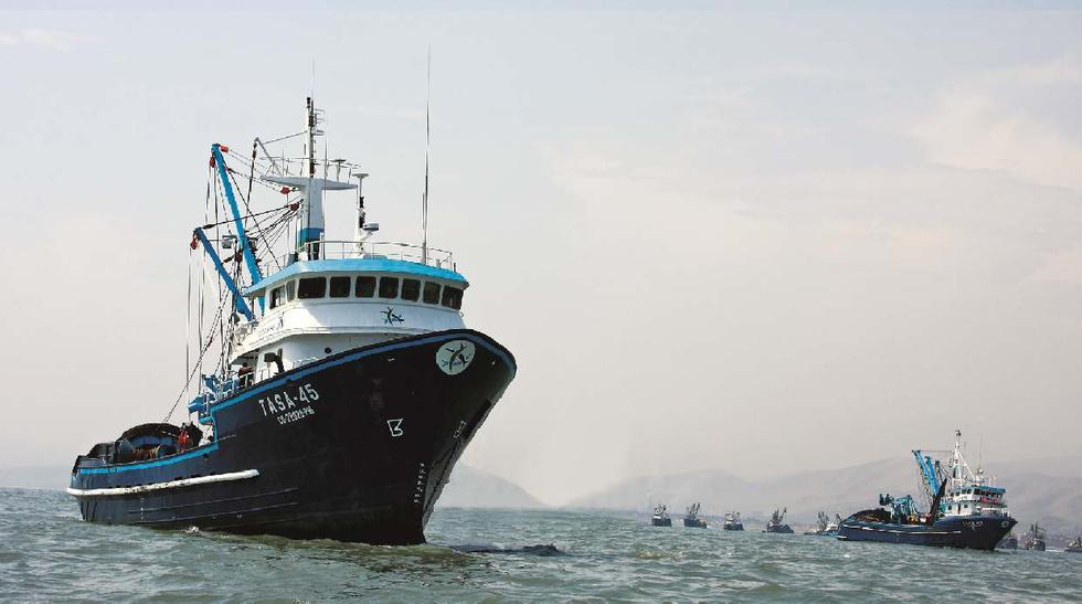 Estas fueron las 6 mayores exportadoras pesqueras enero-febrero - 3