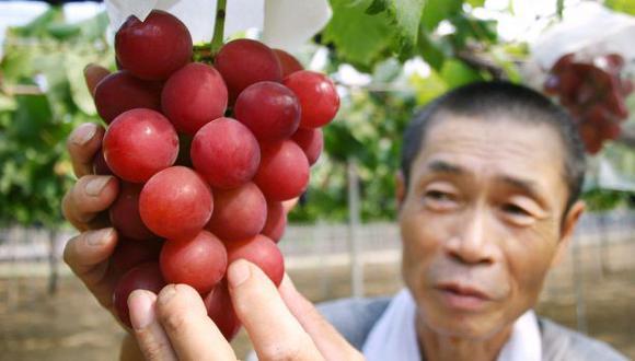 Japón: venden un racimo de uvas por 5.400 dólares