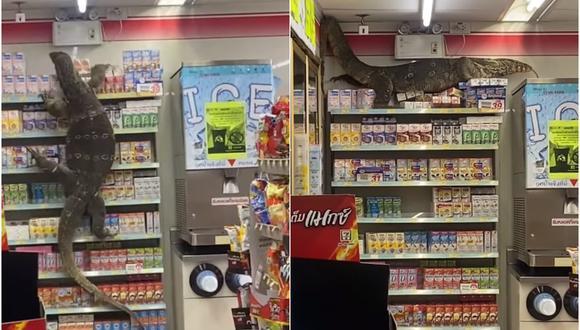 Lagarto gigante causa pánico en una tienda 7-Eleven de Tailandia. (Foto: Jejene Narumpa)