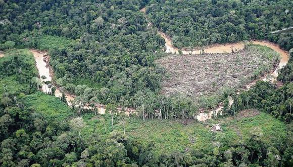 Incautan 9.000 pies tablares de madera en Sierra del Divisor