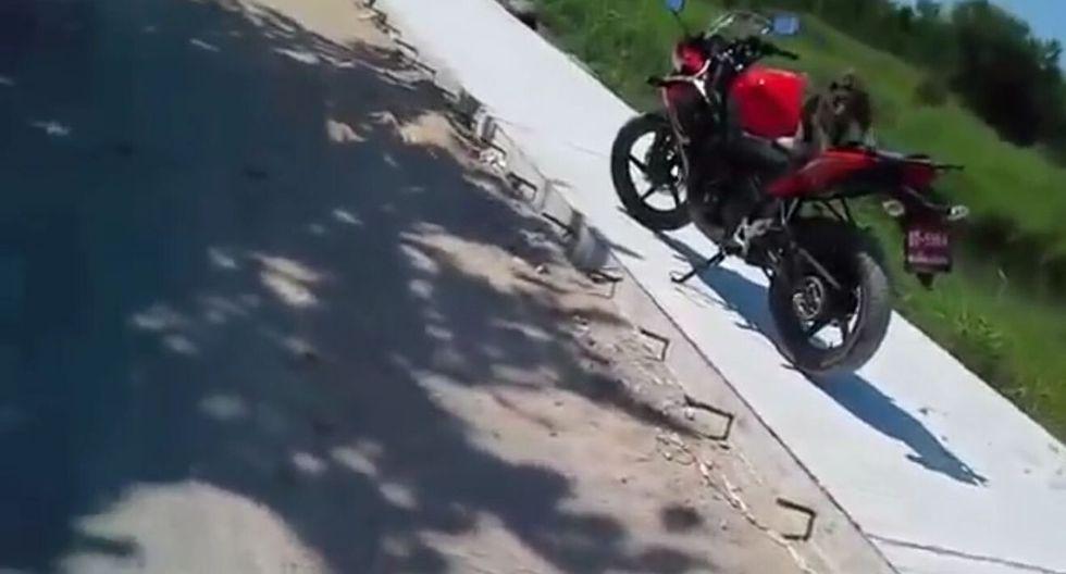 El propietario del vehículo le lanzó un zapato al primate. (Captura)