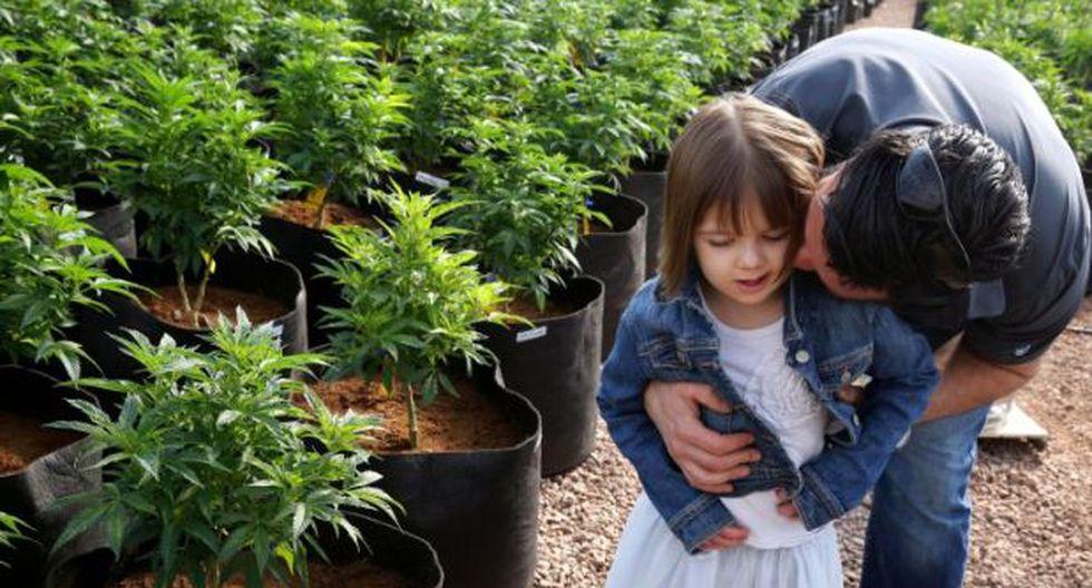 Consumo de marihuana reduciría violencia doméstica en parejas