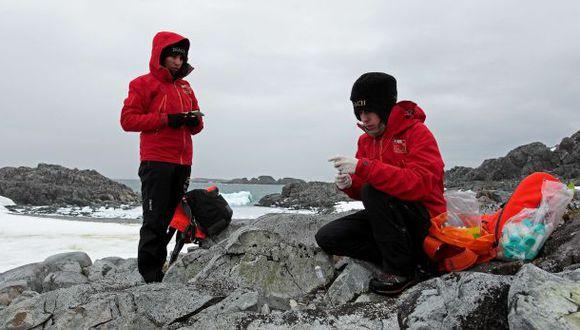 Estudian bacterias antárticas para crear nuevos antibióticos