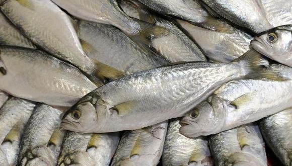Pesca para consumo humano directo creció un 12,5% en el 2013