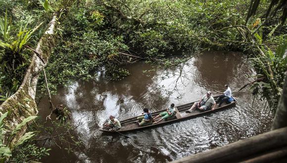 ¿Por qué el Amazonas dejaría de ser el pulmón del mundo?