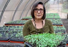 Científicas peruanas: Luz Gómez - Pando, la ingeniera agrónoma estudiosa de la quinua