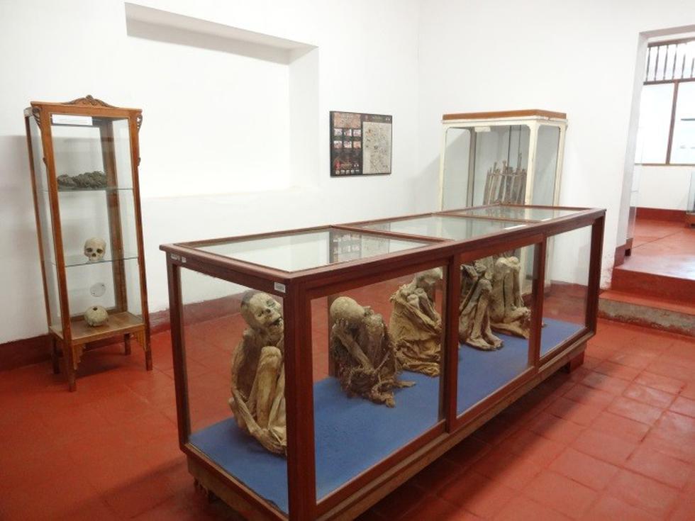 """La Sala de Exhibición """"Gilberto Tenorio Ruiz"""" comprende cuatro salas que exhiben bienes culturales de la cultura Chachapoyas. La primera sala muestra la ubicación, flora y fauna de la región; en la segunda sala se exhiben bienes culturales de cerámica estilo Chachapoyas, con influencia Cajamarca e Inca, textil y objetos orgánicos; en la tercera sala, bienes líticos y en la cuarta sala, momias.(Foto: Ministerio de Cultura)"""