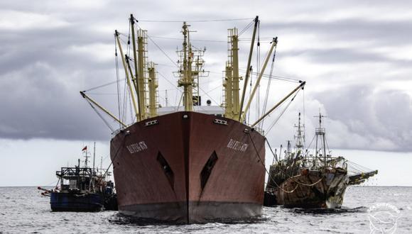 Hace unos días, las embarcaciones chinas transitaron por el mar peruano en busca del calamar gigante. Foto: Simon Ager / Sea Shepherd.