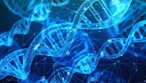 La modificación genética tiene implicancias científicas y éticas. (Foto: Pixabay)