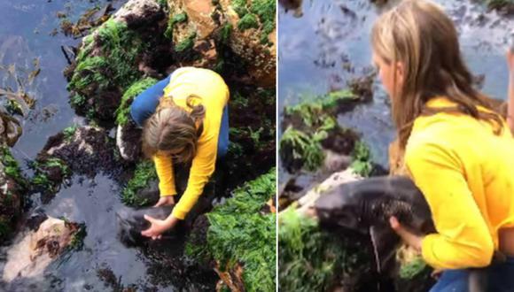 Billie Rea no dudó en ayudar a un tiburón que estaba atrapado entre rocas. (Foto: Abby Gilbert / Facebook)