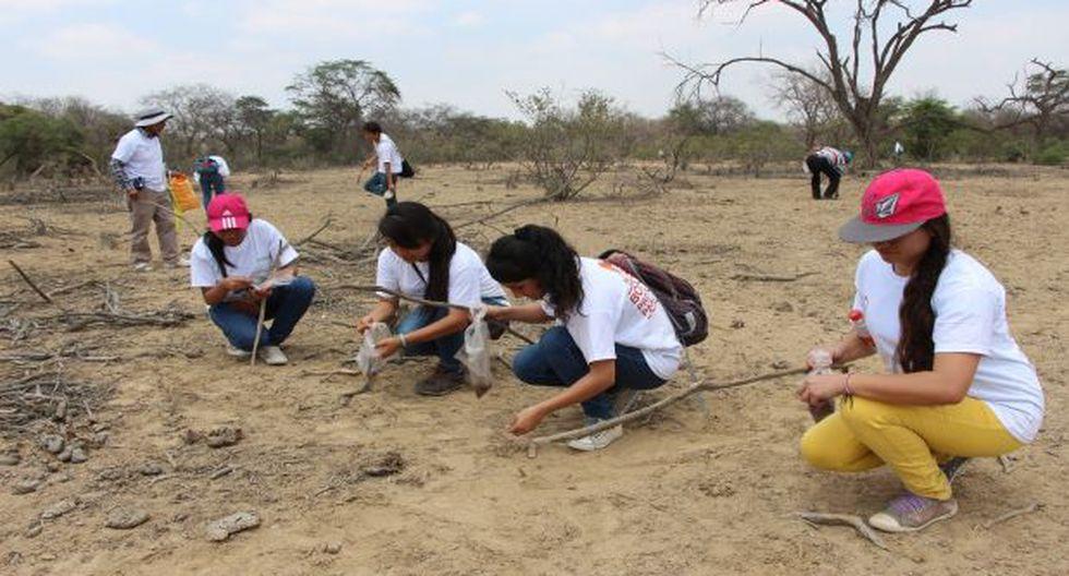 Lambayeque: universitarios reforestan el Bosque de Pómac - 1
