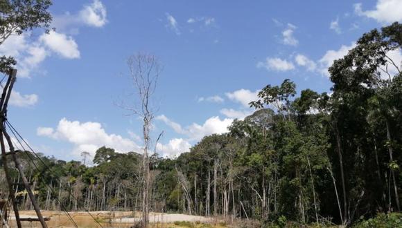 Pese a la pandemia del COVID-19, los mineros han continuado con sus ilegales actividades, arrasando los bosques de la Amazonía. (Foto: Fiscalía Especializada en Materia Ambiental de Madre de Dios)