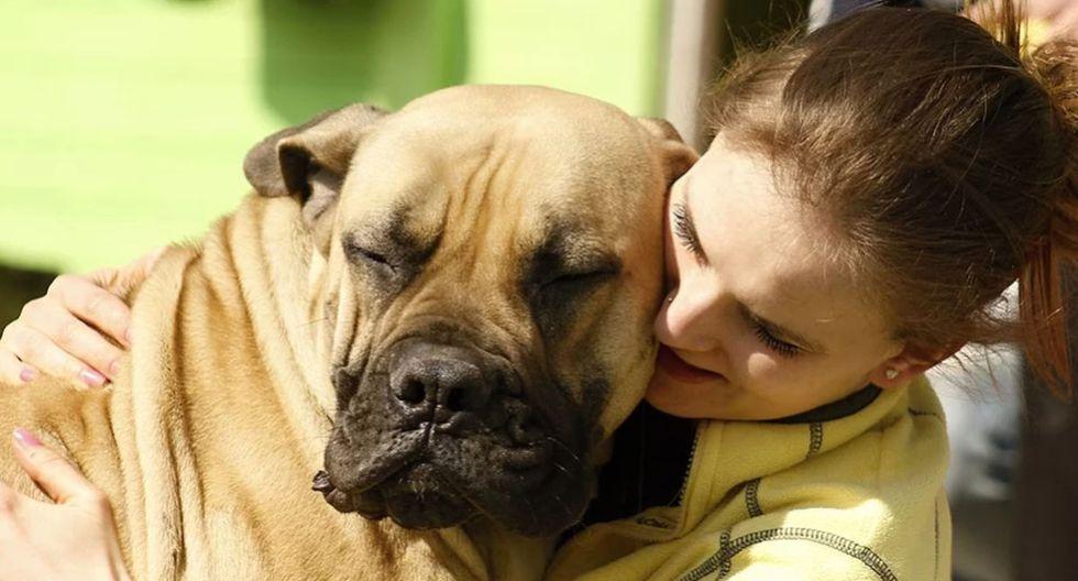 La mujer y su mascota protagonizaron una adorable escena viral de YouTube. (Pixabay)