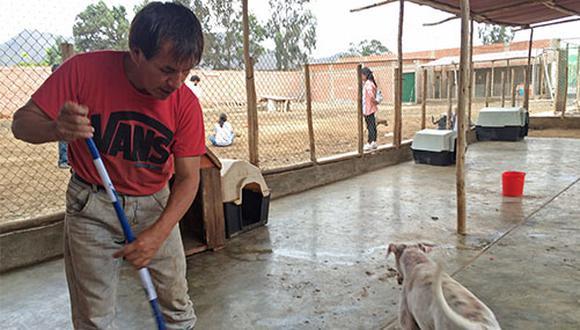 Para mantener la salud de los animales y de quienes los visitan, el muy importante limpiar los pisos a diario y fumigar cada cierto tiempo el albergue.