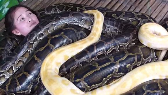 Filipinas: Un zoológico ofrece masajes con 4 enormes serpientes