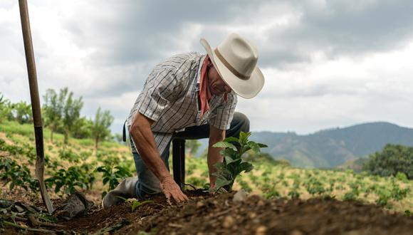 """""""Hoy, más de la mitad de los campesinos viaja temporalmente para realizar un trabajo lejos de su chacra"""". (Foto referencial: iStock)."""