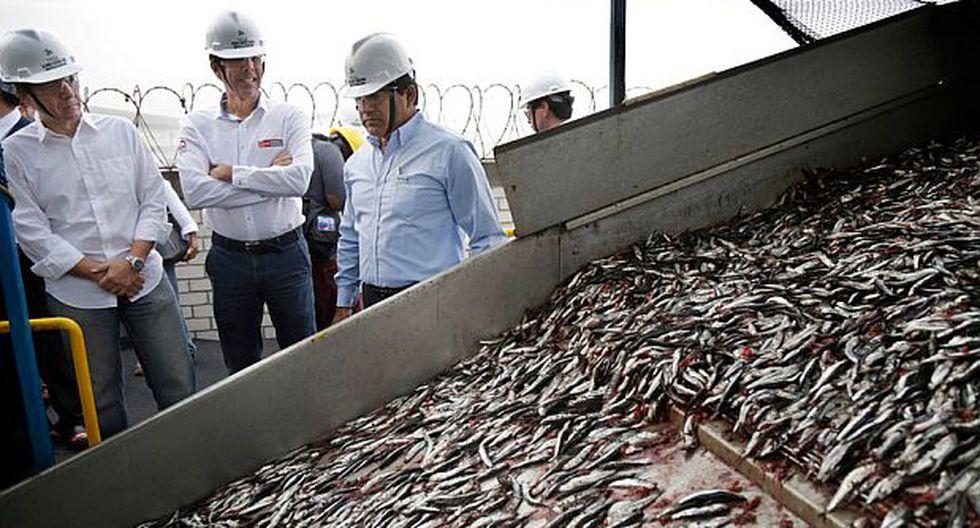 Segura prevé que pesca de anchoveta crecerá por encima del 30%