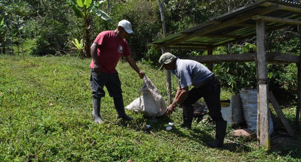 ACPC Pichanaki nació en el 2000 con 39 productores de Chanchamayo. Hoy son más de 300. (Foto: ACPC Pichanaki)