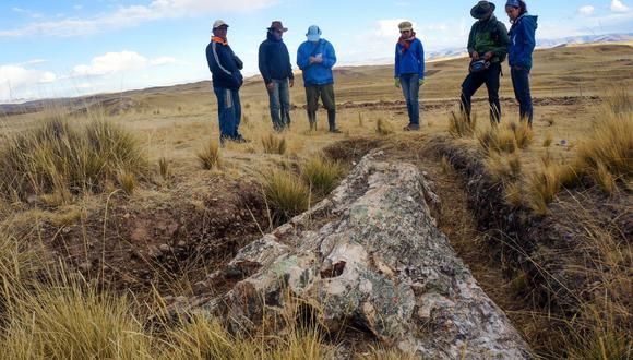 El árbol fósil fue desenterrado en el centro poblado San Miguel, ubicado en la provincia de Espinar. (Foto: Rodolfo Salas-Gismondi)